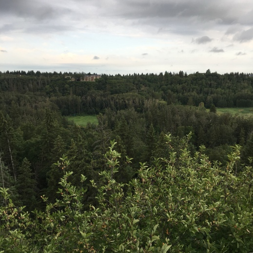 Grandview view